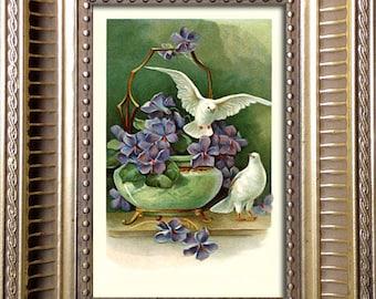 Framed Vintage Print Two Doves and Violets