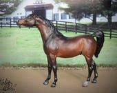 Custom/CM Breyer Model Horse - Classic Arabian Stallion in Bay