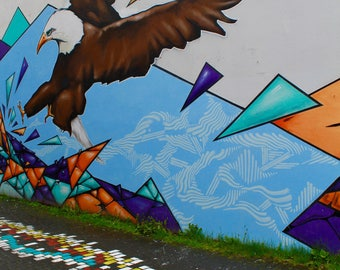 Reykjavik Street Art Photography Print