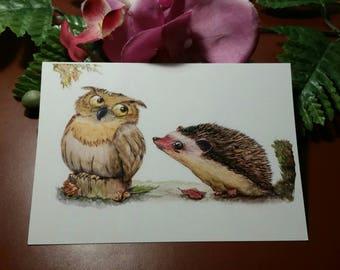 "Postcard ""OWL and hedgehog"""