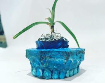 Set of 3 Miniature Teeth Planters | Home | Living | Outdoor | Planters | Pots | Teeth | Unique Home Decor | Unique Gift | Desk Accessory