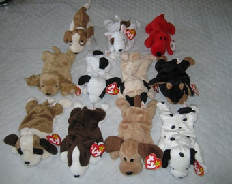 TY Beanie Babies – 11 (Eleven) Dogs