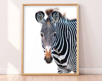 Zebra Print, Wall Decor, Printable Art, Wall Art Print, Modern Art, Funny, Kids Room, Nursery, Wild Animal Print, Animal Print, Wilderness