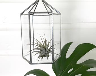 Small Vintage Hanging GLass Terrarium