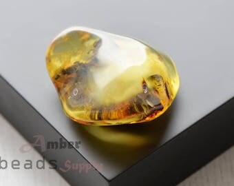 Baltic amber stone. Natural amber piece. 1 unit. 0479