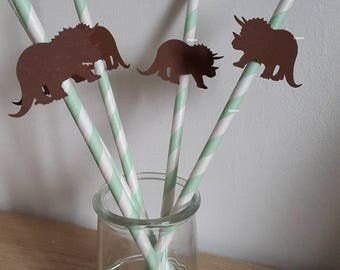 Lot 5 straws dinosaur - green and Brown