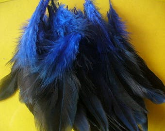 set of 10 feathers for various confections 28