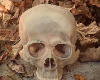 Human Skull Candle (hyper real)