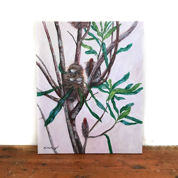 """Possum Banksia"" Original Painting on Canvas"