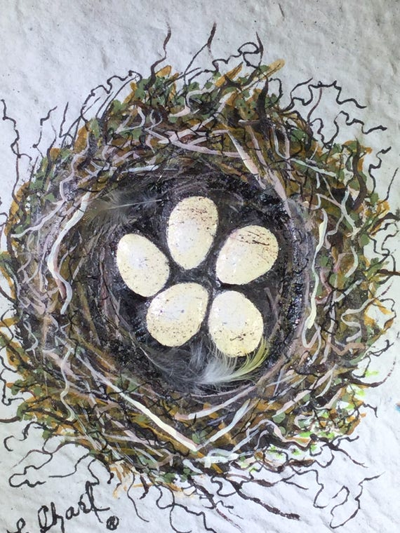 Bird nest on hand made paper