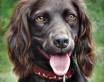 Customized pet portraits