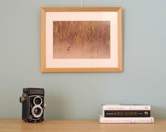 Photographic Art Print framed Little Grebe Sunrise Nature