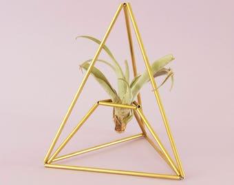 Himmeli PIRAMID: Geometric air plant holder - Indoor table planter - Ornament - Modern home decor - Display box - Minimal - Air plant - Gift