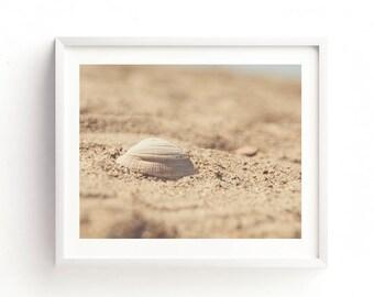 seashell print, seashell photo, beach printable, nursery wall art, instant wall art, girls room decor, brown, earth tones, nautical print