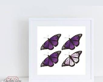 Butterfly Print Art Decor, Coloured Butterfly Print, Owl, Framed, Wall Art, Design, Butterflies