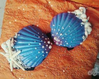 Mermaid Bra: Shell