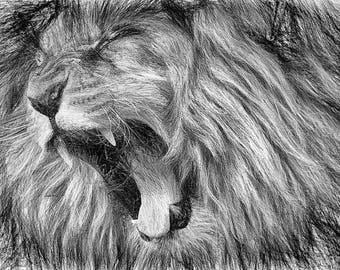 Lion,Line Art,Abstract,Drawing,Geschenk,Unikat,Geburtstag,Home,Paint,Portrait,Deko,Architekt,Raumplaner,Leinwand,Wohnung,Wand Deko