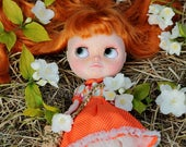 Custom Blythe Doll - Custom Icy doll - OOAK Collectible Doll - Best gift for girl!!!!