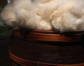 Hand-Plucked French Angora Wool; Fawn Coloring (Beige), 1-oz.