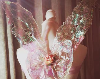 Realistic adult iridescent fairy wings