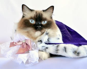 Luxury Royal Cat  Costume - Baroque style Velvet Cloak Costume for Cats Ermine faux fur - Royal Cloak Dogs - King cat Christmas costume