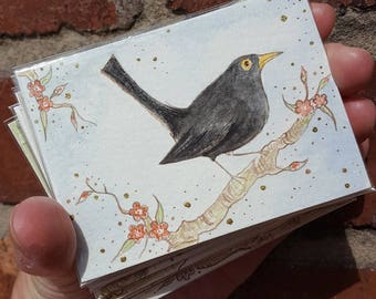 """Blackbird #1 with flowers, ACEO (3.5"""" x 2.5""""), Artist Trading Card, original ink and watercolour painting"""