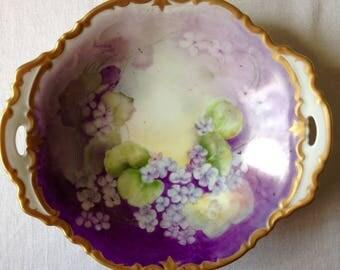 Violets, bowl