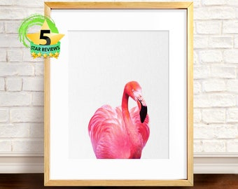 Flamingo, Flamingo Print, Tropical Wall Art, Printable Flamingo, Flamingo Poster, Beach Decor, Art Print, Flamingo Photo
