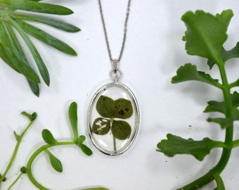 Genuine 4 Leaf Clover Necklace [AC 004] / Stainless Steel Chain / Lucky White Clover Pendant / Triforium Repens Gift / Good Luck
