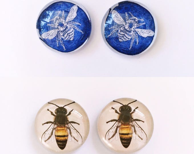 The 'Beezarre' Glass Earring Studs