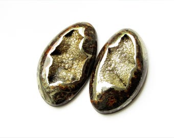 Ammonite-simbircite  cabochon with silver pyrite (pair) 51x29x4 mm