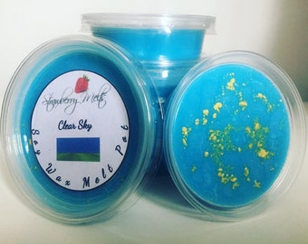 Clear Sky soy wax melt pot
