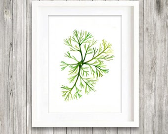 Green sea fingers seaweed watercolor painting print, green leaves print,  green home decor