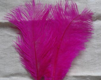 set of 2 Fuchsia ostrich feathers, 17-20 cm