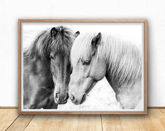 horse art print digital download fine art photography black and white modern