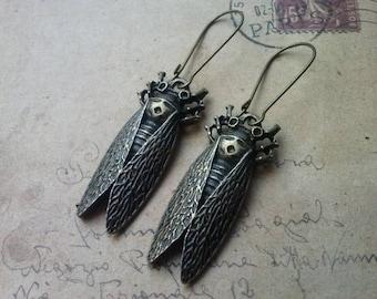 Beetle Earrings ~ Bronze ~