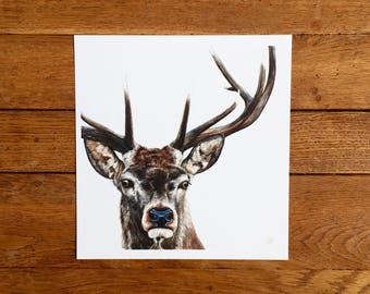 Stag giclée print - unmounted print - stag print - stag painting - stag art - 40 x 40cm