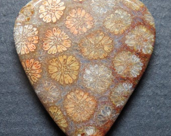 Indonesian Fossil Coral Gemstone Guitar Pick, Stone Guitar Pick. Fossil Coral, Guitar Pick