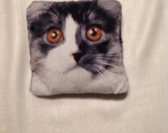 Handsewn Catnip Pillow