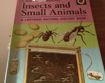 Vintage Ladybird Book - Insects And Small Animals.     From 1972