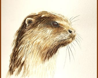 Portrait of an Otter - Print from an Original Drawing