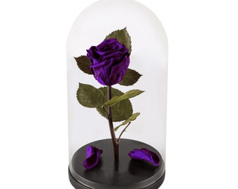 Beauty And The Beast Rose, Live Forever Rose with fallen petals in Glass Dome - Disney home decor, Preserved Rose 100% Natural Real Rose!