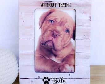 Pet  Frame. Dog Frame. Pet lover gift. Cat frame. Pet Adoption gift. Cat Adoption Gift Dog Adoption Gift