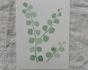 Eucalyptus Series No. 02