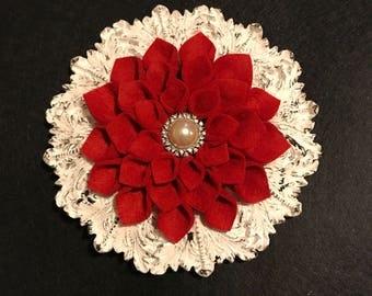 Red Felt Jeweled Adorned on Ornate Frame