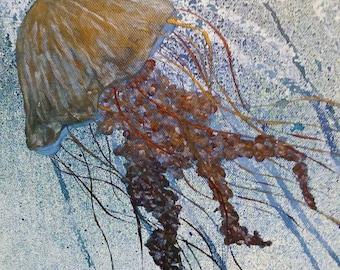 Jellyfish Swimming Free