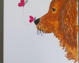 Street labrador - golden retriever dog