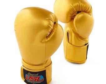 VSL Fighting Carbon 14 oz Boxing Gloves