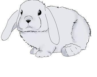Grey Bunny print