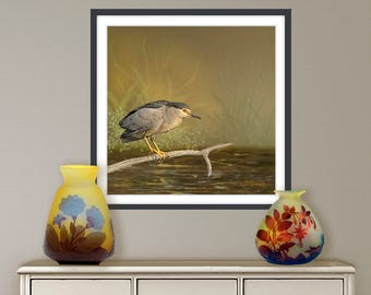 Digital painting, Heron, Bittern, digital download and print on canvas or paper art